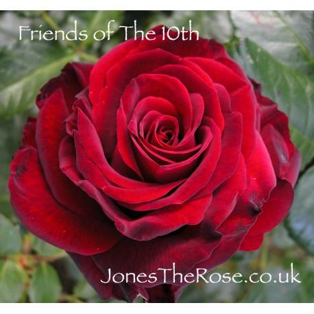 Friends of the Tenth* (Matt06-191-03)